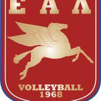 Έμβλημα volleyball