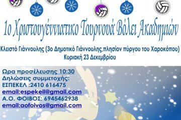 AFISA_VOLEY_300dpi